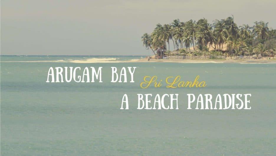 Sri Lanka Arugam Bay Beach with Waves