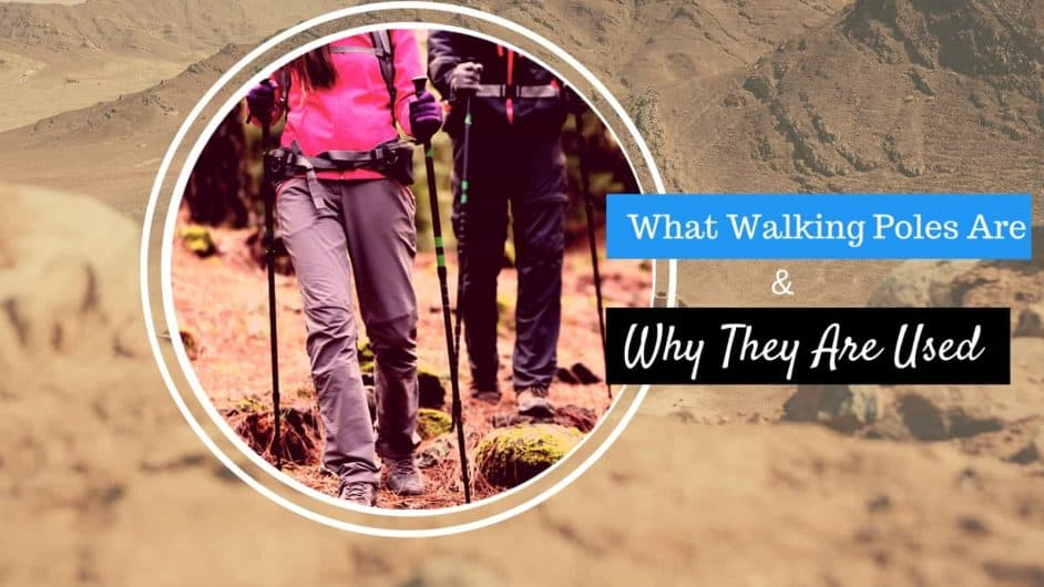Trekking Poles Buyer Guide