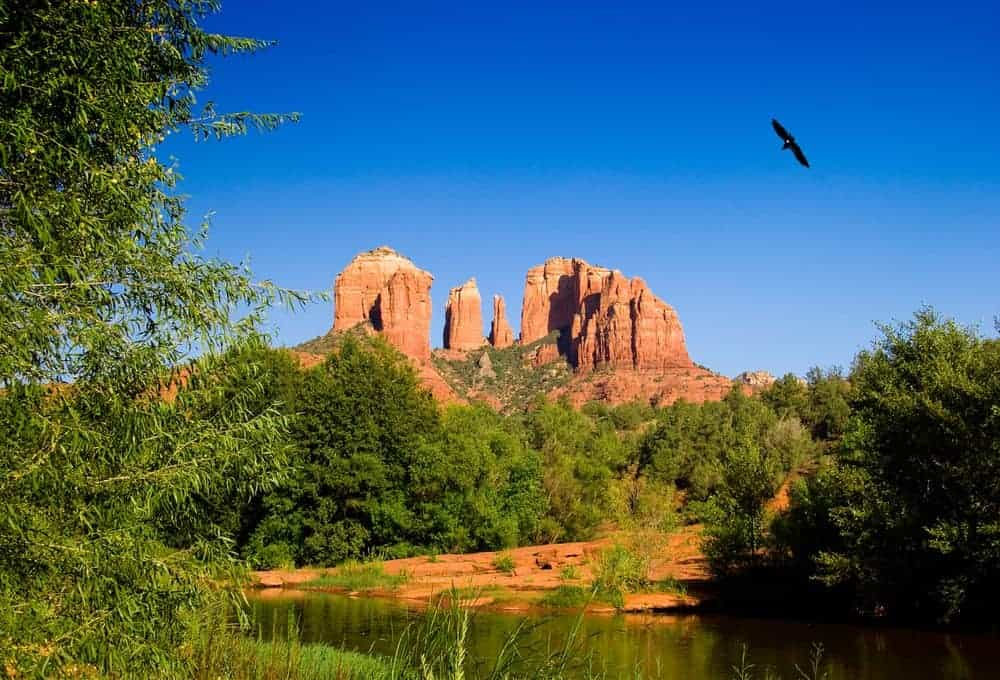 Eagle and Cathedral Rock