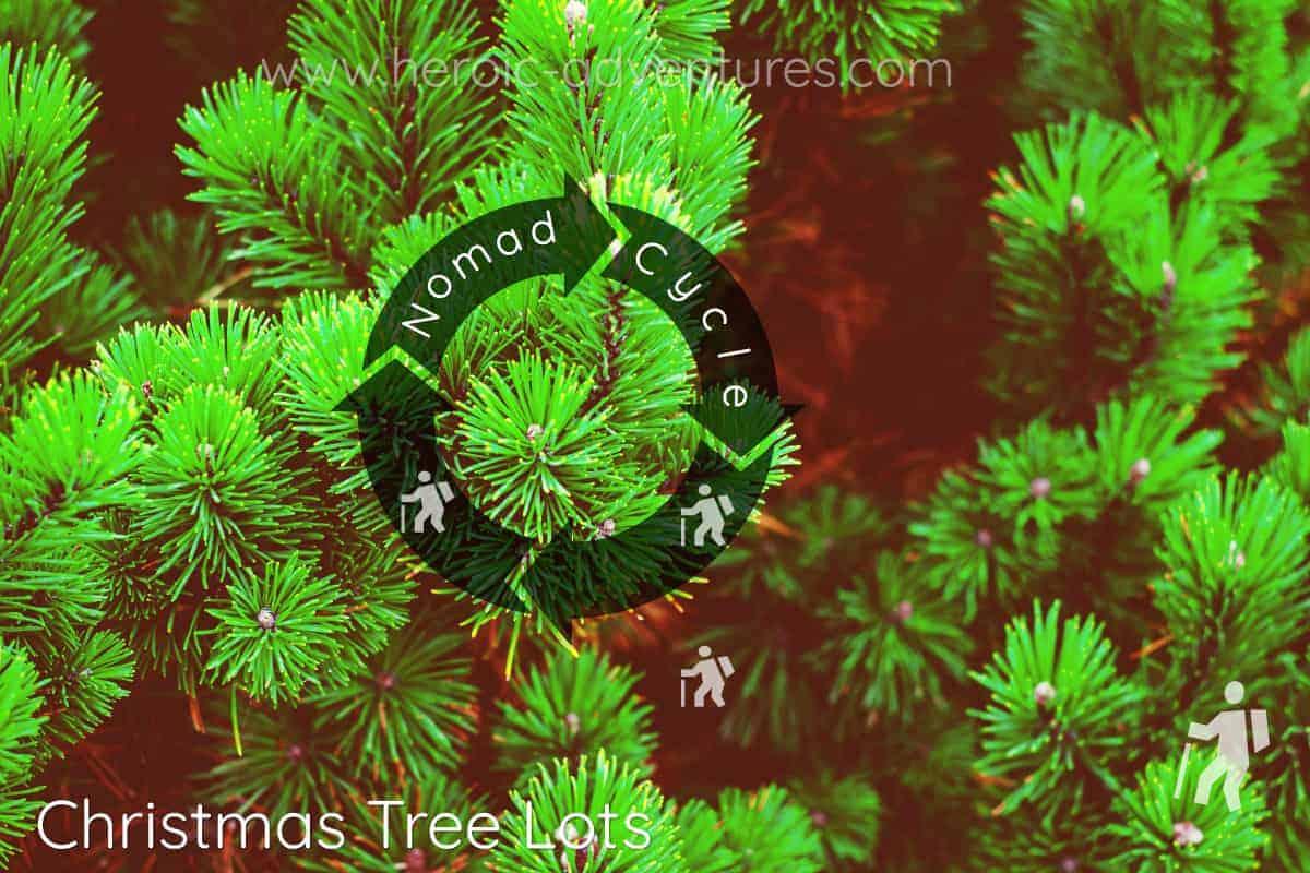 Christmas Tree Sales November December USA