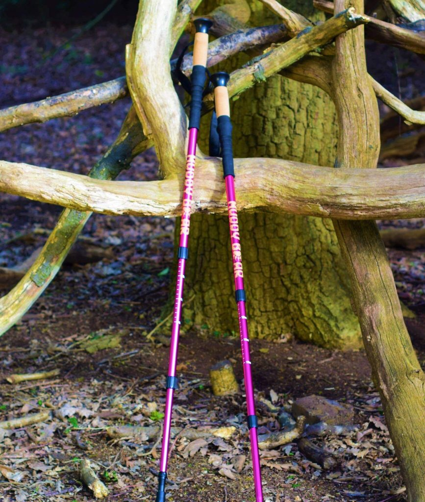 Trekking Poles by Muddy Bear Leaned against a tree